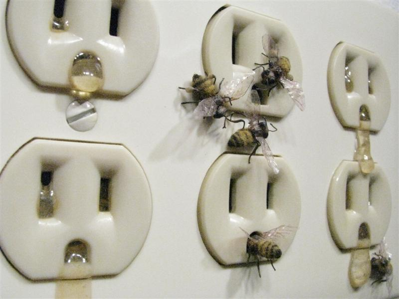 <span>Within The Walls (detail)</span><br />2015 - 5¼&quot x 8¼&quot x 3/4&quot - handmade bees, outlet, glues, dyes, mixed media